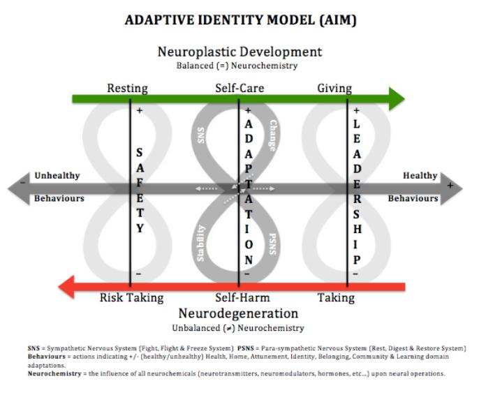 AIM Model