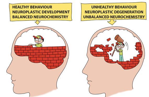 healthy_behaviour